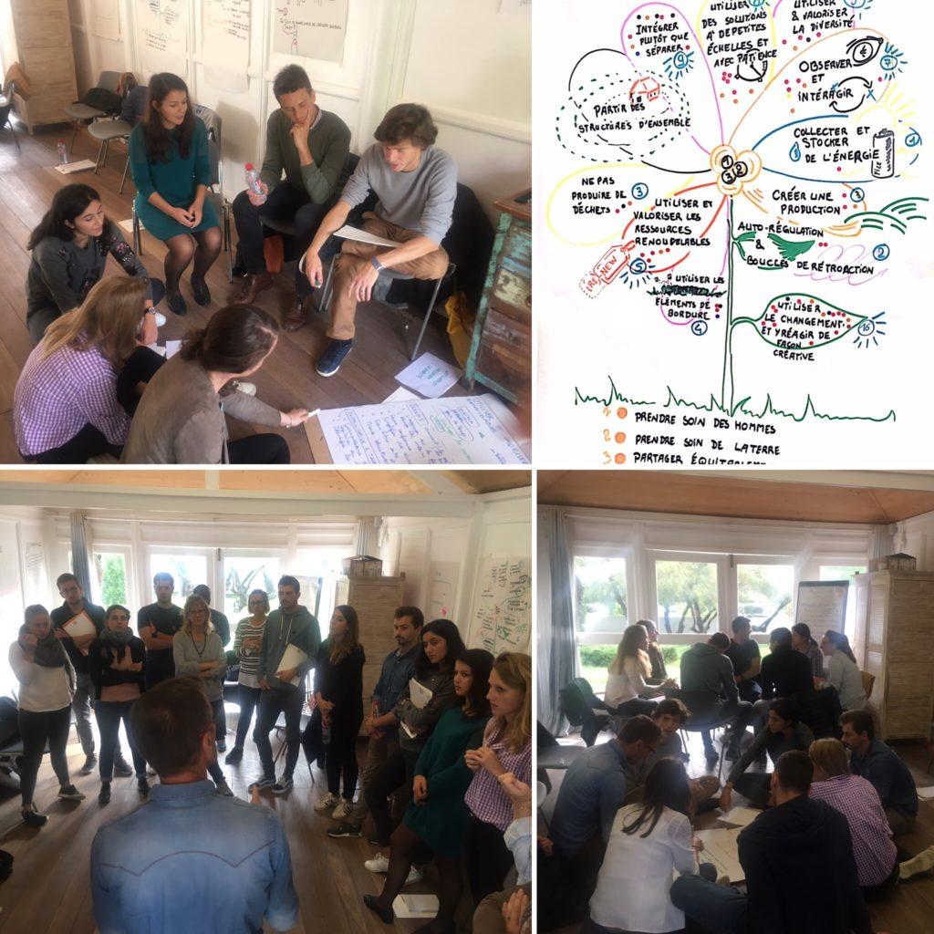 Des règles de fonctionnement en équipe inspirées de la permaculture